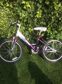 Girls Raleigh 16inch bike very good condition