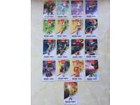 Zelda Amiibo Cards