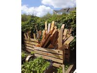Wood - boxes, pallets etc. - project or burning