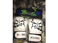 Boxing gloves and boots