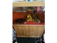 Corner large fish tank