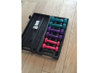 Set of mini dumbells / hand weights in case