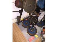 large gym weights