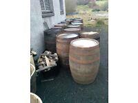 Whisky barrels and plantwrs