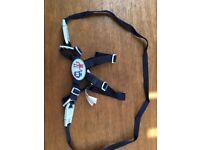 Walking harness / reigns adjustable