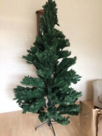 7ft Regal fir Christmas tree