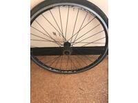 26 inch rear road bike wheel