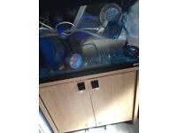 Fish tank and loads of extras
