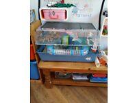 FERPLAST large hamster cage. Split level, wheel, water bottle, play tube, ball, etc.