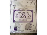 Fantastic beasts colouring book