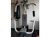 weider multigym and sparring system including punchbags