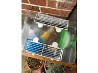 Hamster cage with supplies
