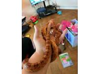 Corn snake and vivarium