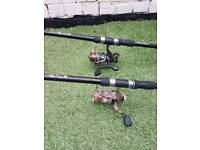 2 carp rods with reels set up with rigs