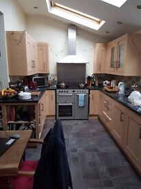 Large double room to rent with shared bathroom. £400 PCM plus bills