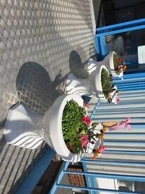 novelty toilet flower pots