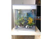 ViaAqua VA-380 Silver 10 Gallons Aquarium Kit with accessories