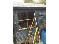 Free Garden shed (you must dismantle)