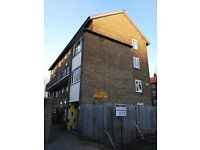 Amazing 3 bed flat with garden for sell
