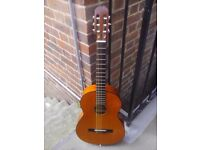 Vintage Spanish guitar (mint condition)