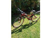 Ladies/Teenage mountain bicycle