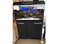 Marine fish tank 120L inc fish