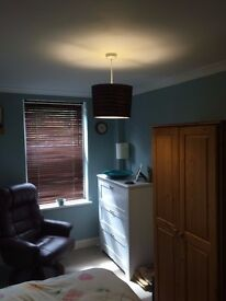 FLAT SHARE - Single room in friendly flat share