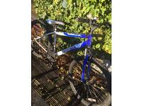 Apollo bike £50 ono