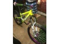 Reduced for Xmas Scott Voltage fr30 custom 2012 dh bike