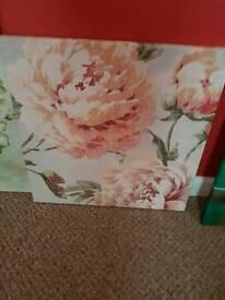 Peach rose canvas frame