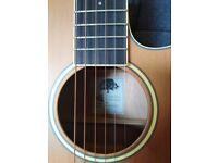 Tanglewood Winterleaf TW9 Electro Acoustic Guitar - Natural Satin