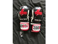 ADULTS /TEEN BOXING GLOVES
