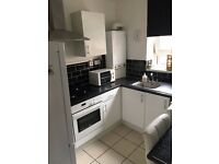 Spacious 2/3 bed flat just 8 min walk from Victoria Station ideal for sharers and companies!