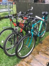 Men's/boy's/girl's/ladies mountain bike's for sale from £35