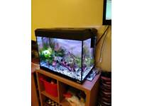 Fluval 90ltrs fish tank + filter SOLD