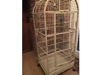 Bird cage large cream parrot African grey