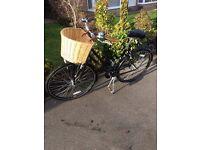 Vintage Ladies' Probike Immaculate Hardly used