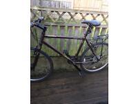 26 inch Apollo bike