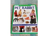 How to look after your pet rabbit book