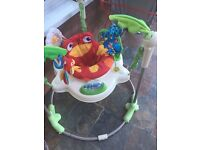 Kingfisher rain forest bouncer