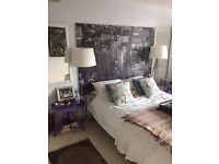 Selling double beds, Mattresses, bed side tables, mirrored wardrobe & paintings