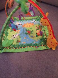 Safari gym mat