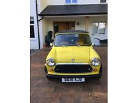 lovely yellow classic mini cabriolet lovely little project needs MOT lady owner