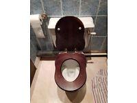 Victorian basin& toilets