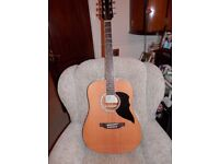 EKO Italian style acoustic guitar, tuner and guitar for Dummies handbook all immaculate condition