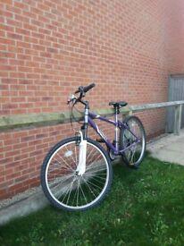Holford Bike for Sale