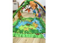 FREE fisher price lights and sounds play mat
