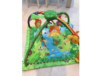 Rainforest baby gym