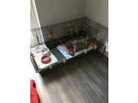 Ferplast 120 indoor rabbit hutch
