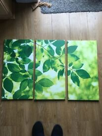 Green and white leaves wall art